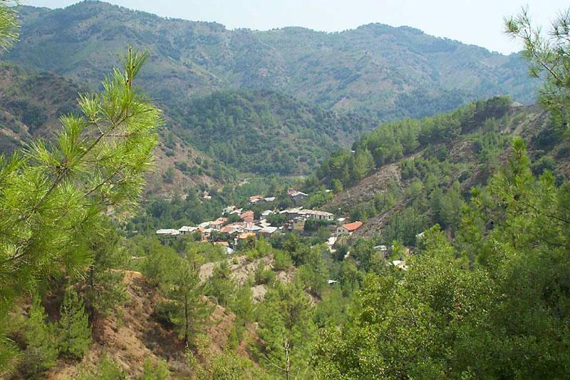 Photos From Paphos Forest Dora Gerovasa Kaminaria
